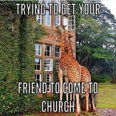 #submission from @thesideways7! -@gmx0 #BaptistMemes Funny Christian Jokes, Christian Humor, Christian Comics, Soul Winning, Church Humor, Apostolic Pentecostal, Youth Camp, Holy Spirit, I Laughed