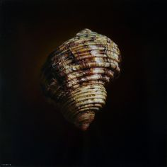 Emanuele Dascanio. Oil on board, 50 x 50 cm, A.D. 2012, Private collection.