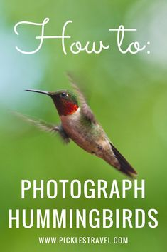 How to Photograph fast moving subjects like birds, especially hummingbirds. Tips and ideas for getting the best photo taking a great action shot picture