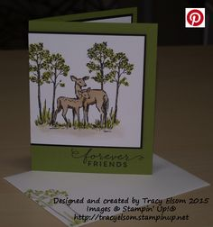 Friends card created using the In The Meadow Stamp Set from the Stampin' Up! 2016 Occasions Catalogue.  http://tracyelsom.stampinup.net