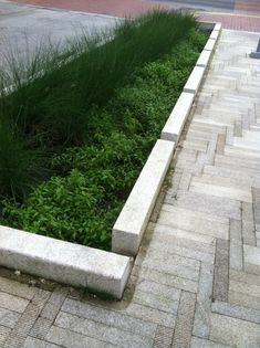 Ideal Simple urban rain garden The openings in the curb and nice landscape make this stormwater
