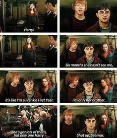 Ron: Six months she hasn't seen me, it's like I'm a Frankie first year. I'm only her brother. Seamus: She's got lots of them, but only one Harry. Ron: Shut up Seamus Harry Potter Love, Harry Potter Fandom, Harry Potter Universal, Harry Potter Memes, Harry Potter World, Harry Und Ginny, Bae, Yer A Wizard Harry, Mischief Managed