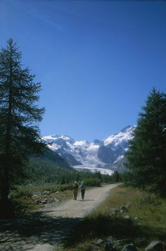 'A couple walks toward the Morteratsch Glacier in Switzerland.' by National Geographic on artflakes.com