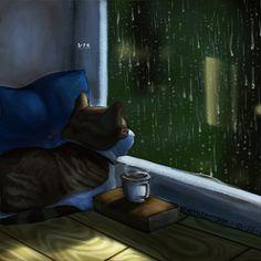 Котик - анимация на телефон №1445751