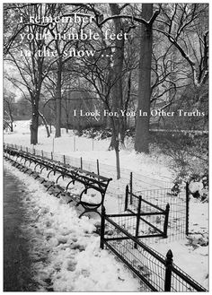 'i remember your nimble feet in the snow' -- I Look For You In Other Truths' by Ramon Loyola