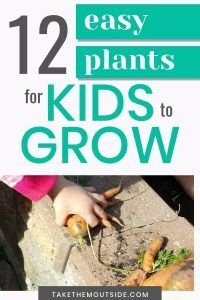 12 easy garden plants to grow with kids in your garden or patio planters this summer. Get kids excited about vegetable gardening by choosing easy and fun vegetables, flowers, and herbs. Nature Activities, Outdoor Activities For Kids, Planting For Kids, Kids Rewards, Building Raised Garden Beds, Patio Planters, Backyard Play, Easy Garden, Vegetable Gardening