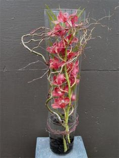 Contemporary flower arrangement with orchids and twisted twigs in glass tank vase