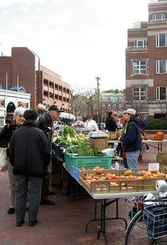 Farmers' Market @ Kendall Square in Cambridge Also ones at: Central Sq, Harvard Sq & Cambrigeport