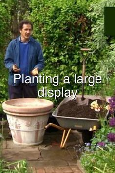 Planting a large container display#522 Hydraulic Cars, Large Containers, Garden Projects, Planting, Display, Outdoor Decor, Floor Space, Plants, Billboard