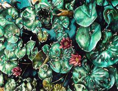 Connor's Waterlilies - ink drawing by Adele van Heerden Water Lilies, Online Art Gallery, Adele, Original Artwork, Art Pieces, Van, African, Drawings, Floral
