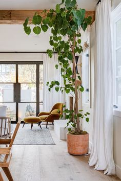 Space Copenhagen designed Swoon to fill the gap between a conventional lounge chair and a typical armchair. Copenhagen Design, Space Copenhagen, Beautiful Kitchen Designs, Beautiful Kitchens, Dyi, Style Cool, Hill Interiors, Best Decor, Interior Photo