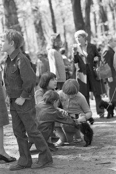 Лица Советской эпохи. Часть 28. Выставка собак, Москва 1979 г.: humus