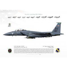 """F-15E """"Strike Eagle"""" SJ 335FS USAF JP-2216"""