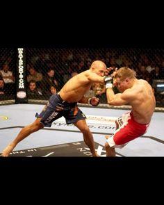 THE MMA TRIVIA QUIZ.