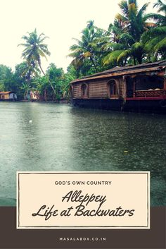 The backwaters of Alleppey is a way of life that needs to be experienced. Well this is the Venice of India. If you are in Kerala, God's own country then you have to visit this place