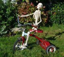 Very Small Child Size Skeleton, Faux, Eye Catching, Conversation Piece, Halloween, Prop, Many Uses