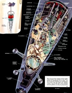 Man Will Conquer Space Soon (1952-54)