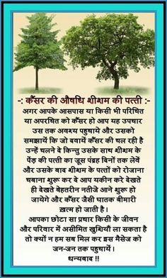 Health Tips In Hindi - Gharelu Nuskhe Health Facts, Health And Nutrition, Health And Wellness, Health Fitness, Health Care, Good Health Tips, Natural Health Tips, Health And Beauty Tips, Ayurvedic Remedies