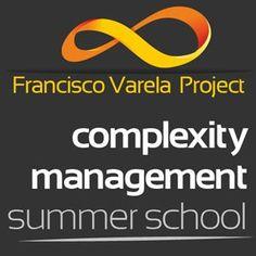 Complexity Management Summer School – CMSS