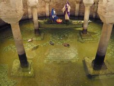 Discover Flooded Crypt of San Francesco in Ravenna, Italy: Filled with goldfish swimming in a shallow pool of sea water, this ancient crypt is more wishing well than burial site.