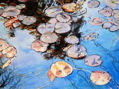 Pond Lilies, x Kathleen Ballard strives to depict the serene and elegant side of nature, whether focusing on a beautiful flower, a. Watercolor Projects, Watercolor Techniques, Watercolor Paintings, Watercolors, Water Ripples, Winslow Homer, Lily Pond, Love Painting, Painting Flowers