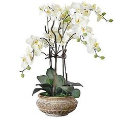 #Artificial orchid #flowers home decor indoor plants pot fake leaf #tropical flow,  View more on the LINK: 	http://www.zeppy.io/product/gb/2/252465252764/