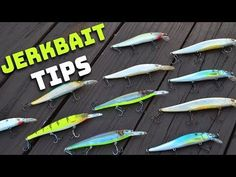 Bass Fishing Tips - Jerkbait (Everything You Need To Know) - Just love fishing.fishing is my passion Bass Fishing Tips, Fishing Knots, Ice Fishing, Trout Fishing, Saltwater Fishing, Kayak Fishing, Fishing Tackle, Fishing Outfits, Fishing Shirts