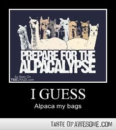 The alpacalypse is coming. Alpaca my bags - - Boring Pics + Epic Captions - Taste of Awesome