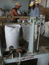 Dos obreros trasladan hacia una báscula un saco con granos de café