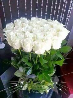 Beautiful Flowers Pictures, Beautiful Flowers Wallpapers, Beautiful Flowers Garden, All Flowers, Flower Pictures, Beautiful Roses, Pretty Flowers, Terre Plate, Good Morning Flowers Gif