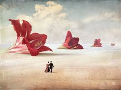 """The Beach"" Digital Art by Christian Schloe posters, art prints, canvas prints, greeting cards or gallery prints. Find more Digital Art art prints and posters in the ARTFLAKES shop. Art Plage, Framed Art Prints, Canvas Prints, Max Ernst, Marc Chagall, Tim Walker, Illustration, Magritte, Pop Surrealism"