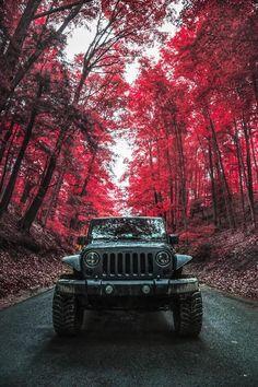 viciouscustoms:  (via Jeep Wrangler | Jeep / Trucks | Pinterest | Jeeps, Jeep Wranglers and Photographers)