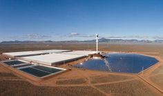 Un innovador invernadero solar para cultivar vegetales en medio del desierto