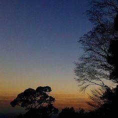 【ehhendaiou】さんのInstagramの写真をピンしています。《#nature #sunset #sky #trees #evening #twilight #contrast #woods #forest #lightandshadows #自然#夕焼け#夕闇#森#林#黄昏#木#光と影#コントラスト#природа #natur》