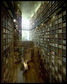 huge library