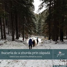 Winter in Vama Buzaului, Ciucas Mountains, Pastel Chalet Winter Season, Pastel, Romantic, In This Moment, Seasons, Mountains, Outdoor, Winter Time, Outdoors