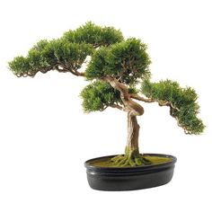 Faux cedar bonsai tree.  Product: Faux bonsai treeConstruction Material: Silk and ceramicColor: ...