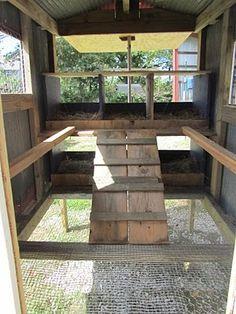 Inside coop - mesh floor