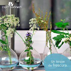 Los floreros pueden añadir un toque de clase y estilo a tu decoración. #Vases #Decor #Vintage #Trends