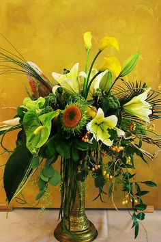 Exotic Tropical Flowers and Air Plants