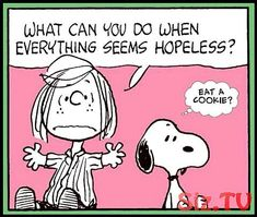 Snoopy and the Peanuts gang Snoopy Comics, Snoopy Cartoon, Peanuts Cartoon, Peanuts Snoopy, Peanuts Comics, Snoopy Pictures, Funny Pictures, Snoopy Und Woodstock, Peanuts Quotes