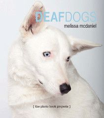 Award-winning Deaf Dogs photo book: Winner of the IPPY award. 78 touching portraits and short biographies of deaf dogs. Thousands of deaf dogs are put to sleep each year simply because they are deaf. Deaf Dogs is the photographer and author's tribute to her deaf dog who has given her so much. 78 color portraits and short biographies. A percentage of the sale price is donated to animal rescue. Printed in USA. $29.95