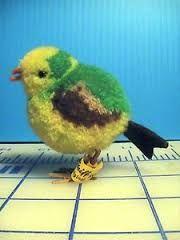 Bildergebnis für Pompon Vögel