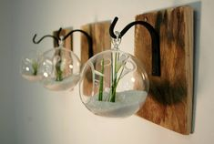 Individual Glass Globe Wall Decor each by PineknobsAndCrickets, $40.00Gorgeous, unique and one-of-a-kind! Round glass globes each hanging from a wrought iron hook that is mounted to a recycled wood board. Can be order in sets of 2 or 3.