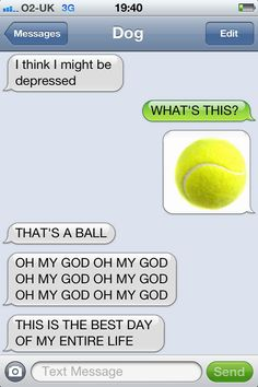 The 13 Most Hilarious Exchanges From The Text From Dog Blog