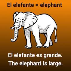 Mi Palabra Del Día: El elefante - the elephant