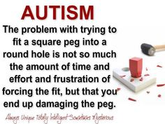 Integration is not making our autistic kid fit the mold but finding the mold that fits our autistic kid.