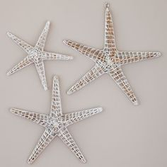 Wicker Starfish | PBteen