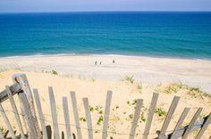Wellfleet Photographs Metal Prints - beach fence and ocean Cape Cod Metal Print by Matt Suess