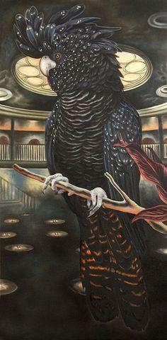 JARED JOSLIN - Black Cockatoo 2010